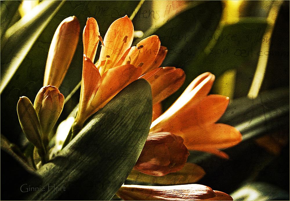 photoblog image 2e Paasdag = 2nd Easter Day