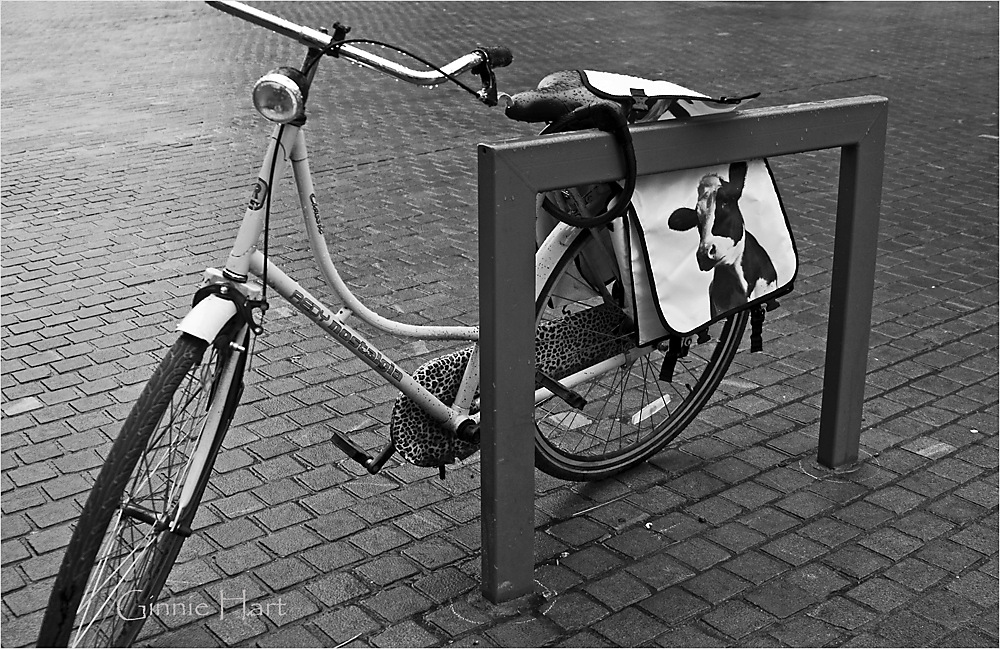 photoblog image Bikes in Antwerp:  2/3