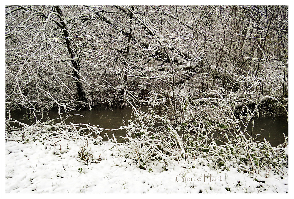 photoblog image Snow Friday