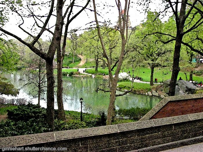 photoblog image NYC's Central Park